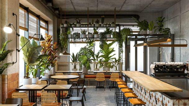 Thiết kế quán cafe bình dân hút khách và tiết kiệm chi phí