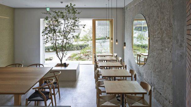 Thiết kế quán café đẹp tràn ngập thiên nhiên và ánh sáng